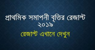 PSC Scholarship Result, Primary Britti Result 2019, DPE Scholarship Result