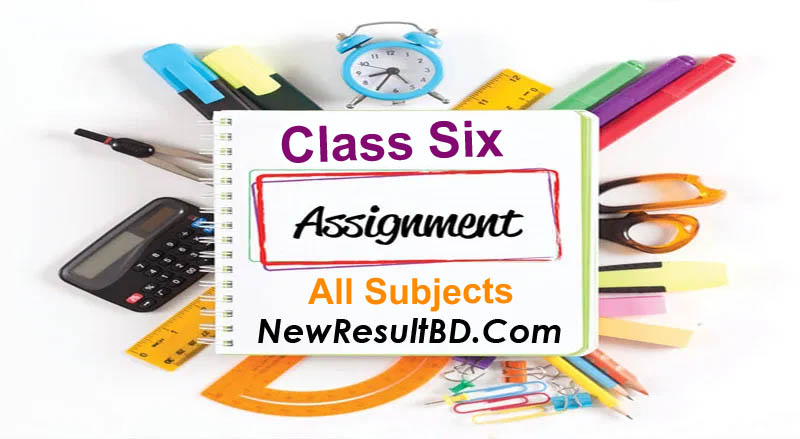 Class 6 Assignment solutions, answer all questions