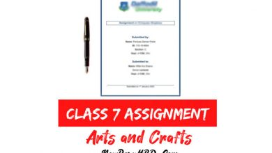 Class 7 Arts and Crafts Assignment Answer