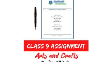 Class 9 Arts and Crafts Assignment Answer